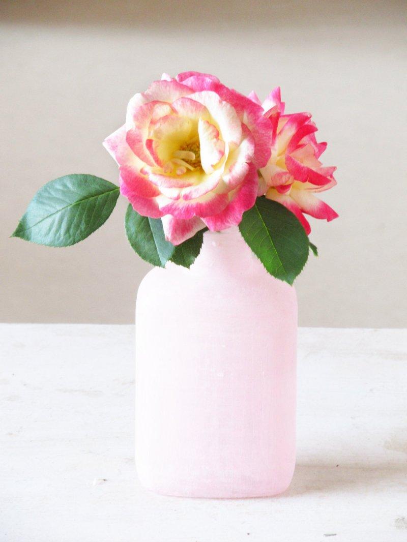Trumatter_Roses